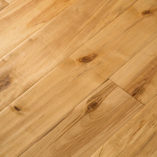 Click to view these Birch Hardwood Technical Species Information products...